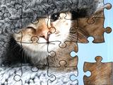 Кошки: Пазлы