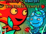 Огонь и Вода 7