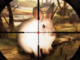 Охота на Кроликов 3Д