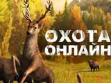 Охота на Животных Онлайн