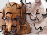 Пазлы с Кошками и Собаками