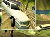 Водитель Лимузина 3Д