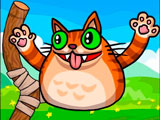 Запуск Злого Кота
