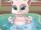 Кошка Анжела в Ванной