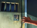 Побег из Тюрьмы: Приключения