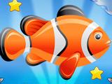 Освободи Рыбку