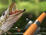 Рыбалка: Утренний Улов