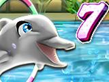 Шоу Дельфинов 7