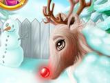 Рождественский Олень: Уход