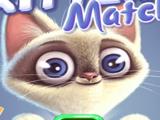 Кошки: Собери Карточки