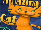 Удивительная Кошка