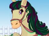 Прически для Лошадей