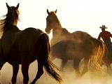 Пазл: Ковбои на Лошадях