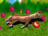 Лошадь на Свободе