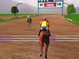 Чемпионат по Прыжкам на Лошадях